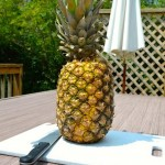 How To Get Your Pineapple Naked And Drunk