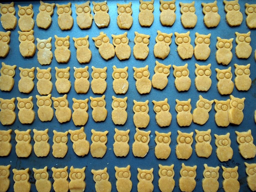 Cheddar Owl Crackers