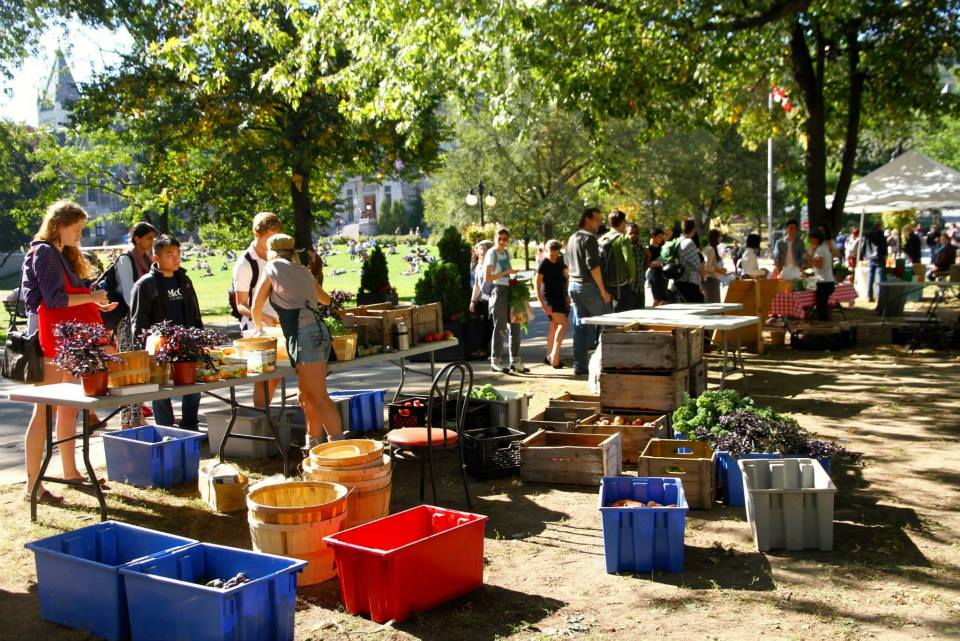 mcgill farmers' market