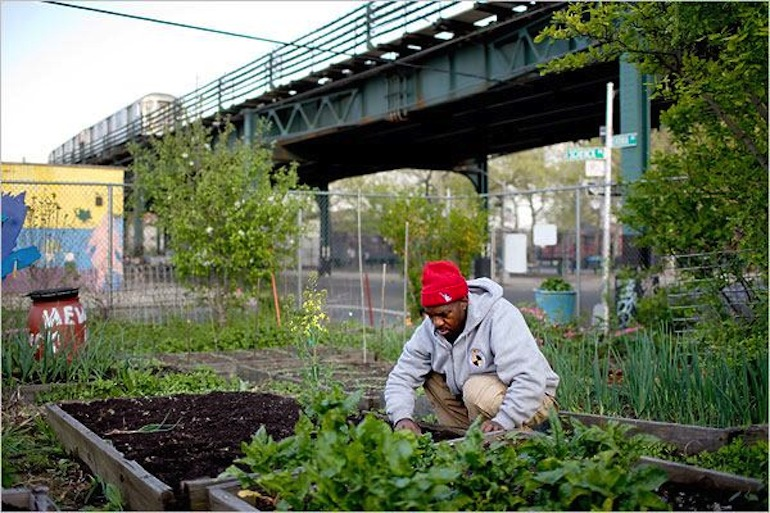 Urban Agriculture Round Up
