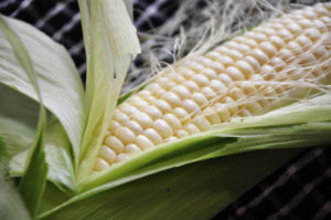 How to Avoid GMO's, Whether They're Labeled or Not