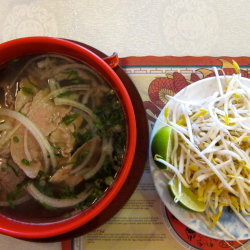 Saigon Garden: How to Eat Pho Like a Pro