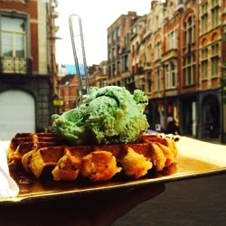 5 Reasons Why You Should Try Real Belgian Waffles While Studying Abroad