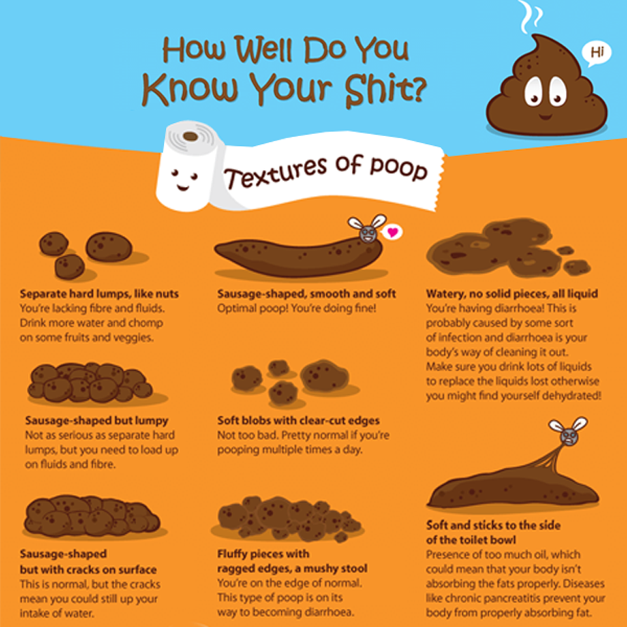 How Many Times A Day Should You Poop