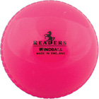 Readers Windball Cricket Ball
