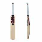 GM Mythos DXM L540 606 SH Cricket Bat