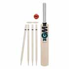 GM Diamond Mini Cricket Set