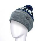 Devizes HC Bobble Hat
