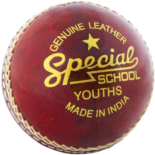 Readers Special School Cricket Ball