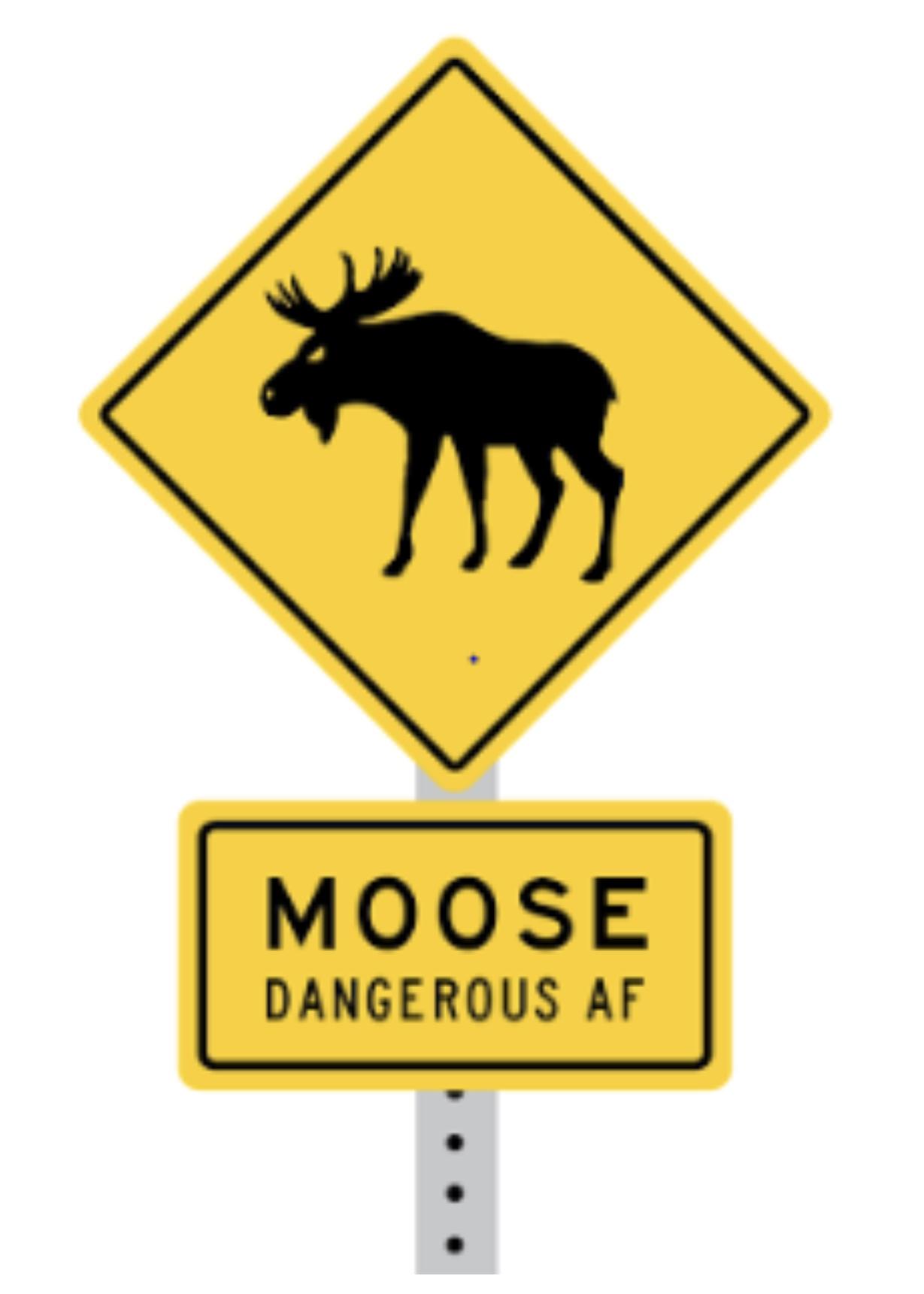 Football Bad Beats: Moose Club Week 6 article feature image