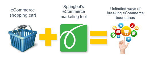 eCommerce Marketing from Springbot