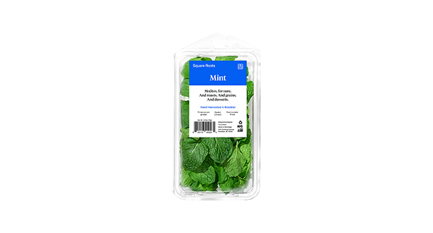 Square Roots packaged mint