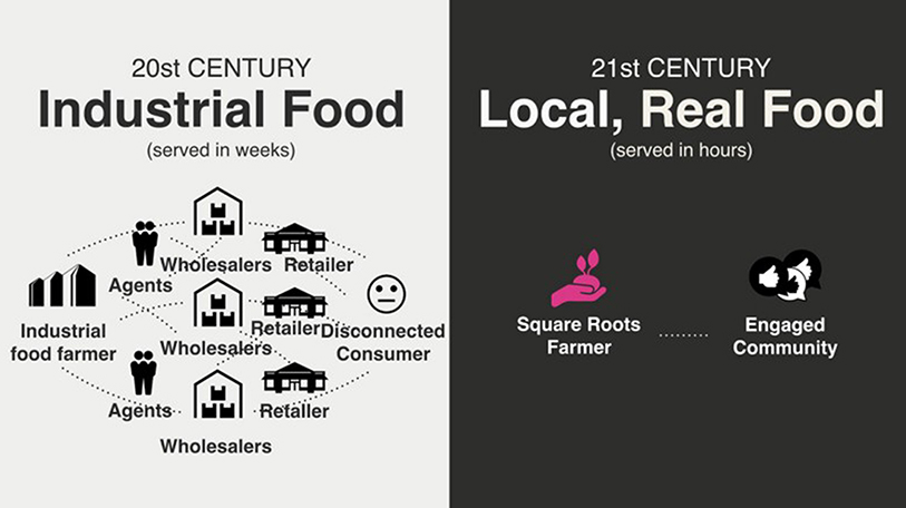 Square Roots' supply chain versus the industrial food systems' supply chain.