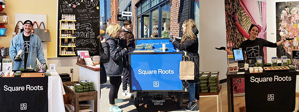 Square Roots Next-Gen Farmers sampling hyper-local herbs at pop-up events around NYC and Brooklyn.