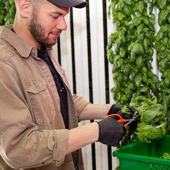 Square Roots Next-Gen Farmer Brandon Brones