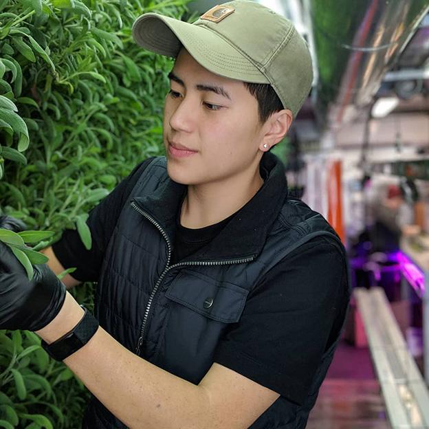 Square Roots next-gen farmer Micah Helle.