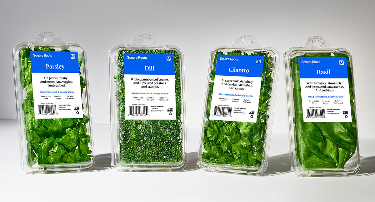 Square Roots packaged herbs, including parsley, dill, cilantro, and basil