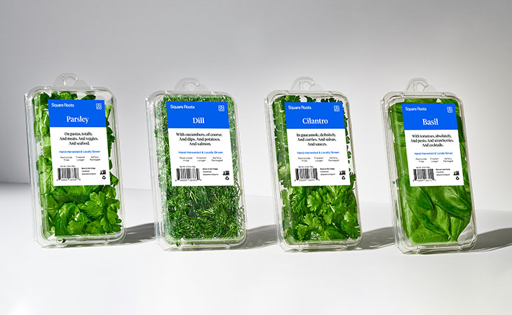 Square Roots branded packaged produce, parsley, dill, cilantro, and basil