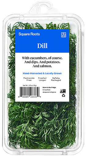 Dill inside a single branded Square Roots clamshell