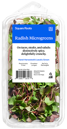 Radish Microgreens inside a single branded Square Roots clamshell