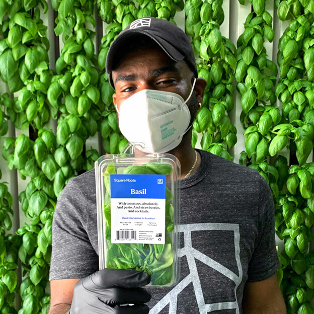 Square Roots farmer holding up a package of basil inside an indoor, vertical farm of basil