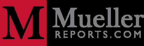 Mueller Services