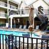 4800 W Lovers Lane 405