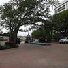 2001 Holcombe Boulevard Unit: 705
