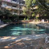2525 Turtle Creek Boulevard 518