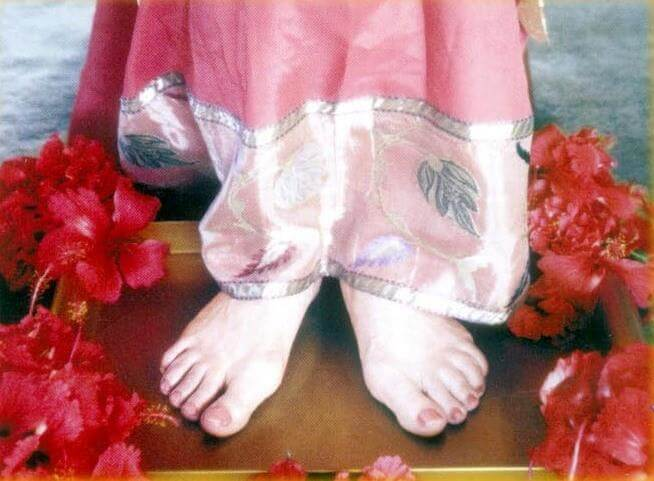 The Mother's Divine Feet