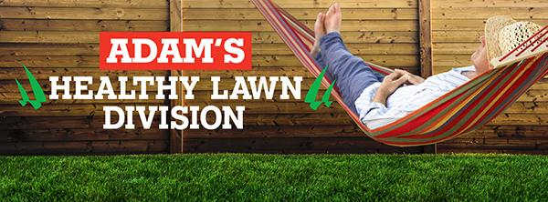 Adam's Healthy Lawn