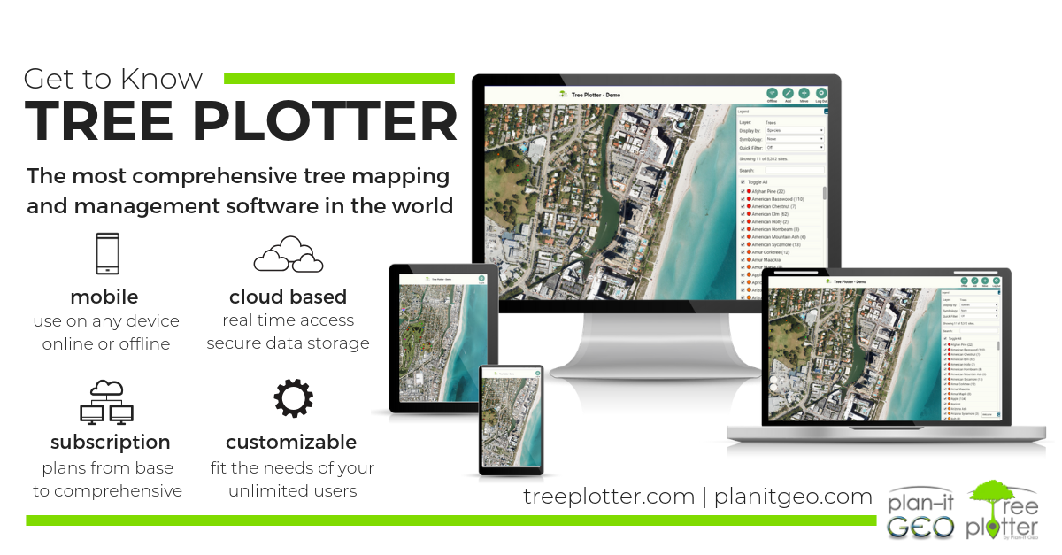 tree Plotter Logo