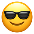 smiling face with sunglasses 1f60e