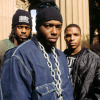 Naughty by Nature Tour Dates