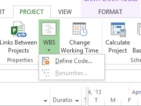 Using Work Breakdown Structure (WBS) Codes in Microsoft