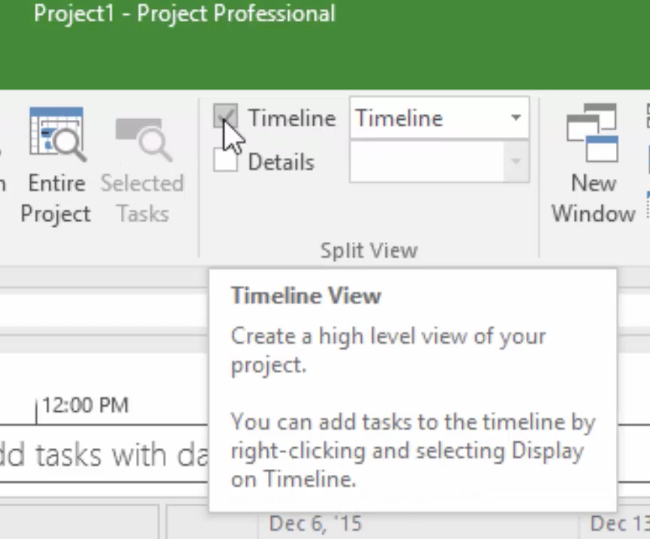 The Microsoft Project 2016 timeline