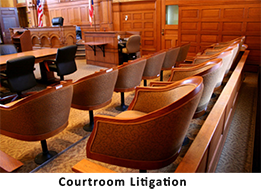 We excel in Courtroom Litigation