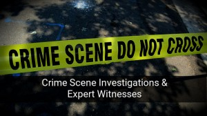 CSI & Expert Witnesses