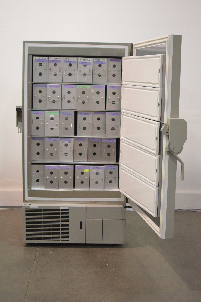 Thermo Electron Model ULT2586-9SI-D37 Revco Freezer