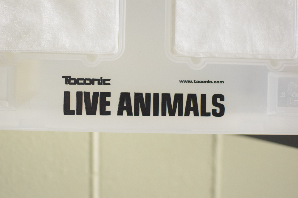 Taconic Live Animal Plastic Bins