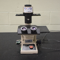 Olympus CK2 Microscope