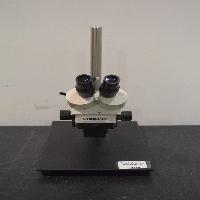 Fisher Scientific StereoMaster Microscope