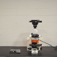 Nikon E400 Fluorescent Microscope
