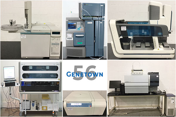 Genetown 56 Online Lab Auction