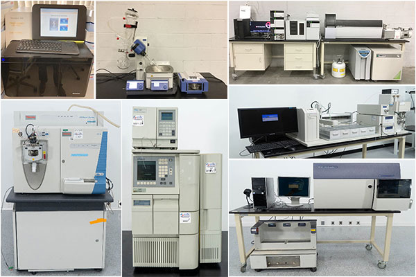 Genetown 61 Online Lab Auction