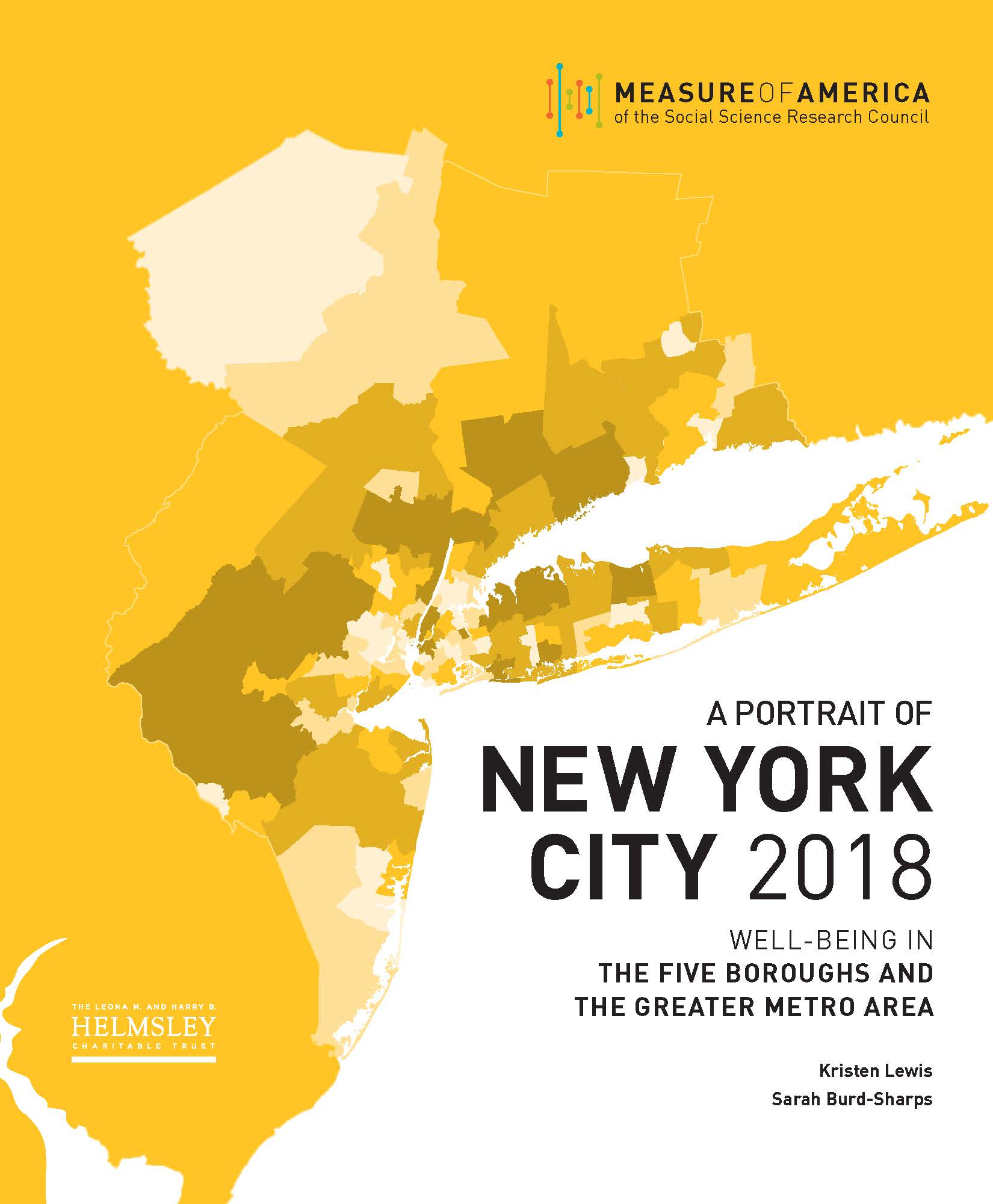 A Portrait of New York City 2018 — Measure of America: A ... on census 2010 demographic profiles, china ethnic maps, census map charlotte, census 2012 data ethnic groups, united states ethnic group maps, ethnicities us maps,