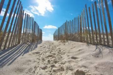 beaches_of_alabama_llc.jpg