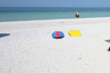 Paddleboard rentals on the beach (Pic)