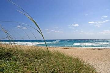The Beach in Beautiful Singer Island, FL (Pic)