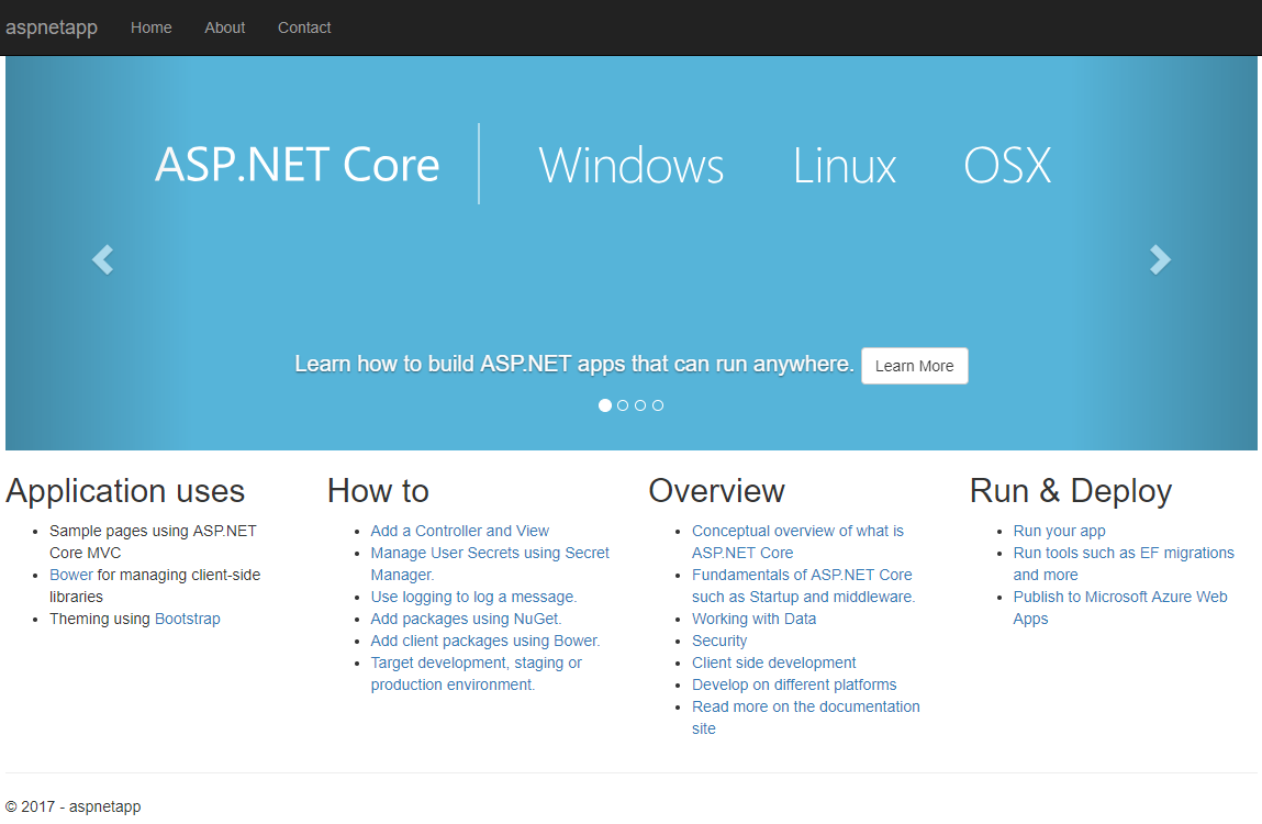 aspnet container application in browser